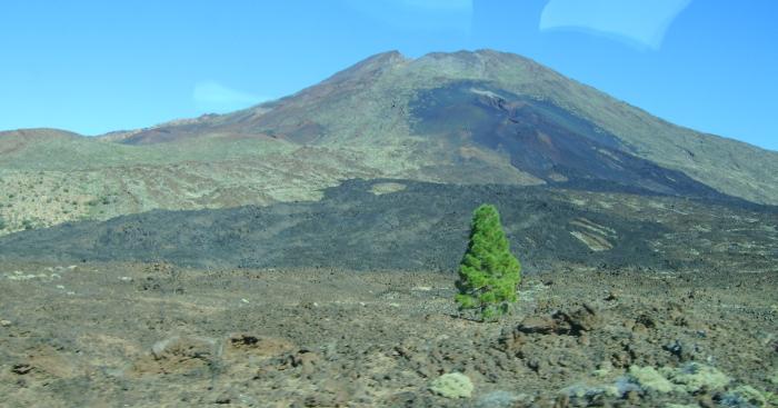 Vulkanlandschaft Teide
