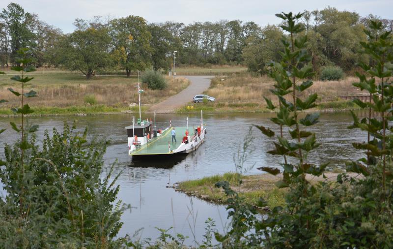 Dahlener Heide - Elbfähre Belgern