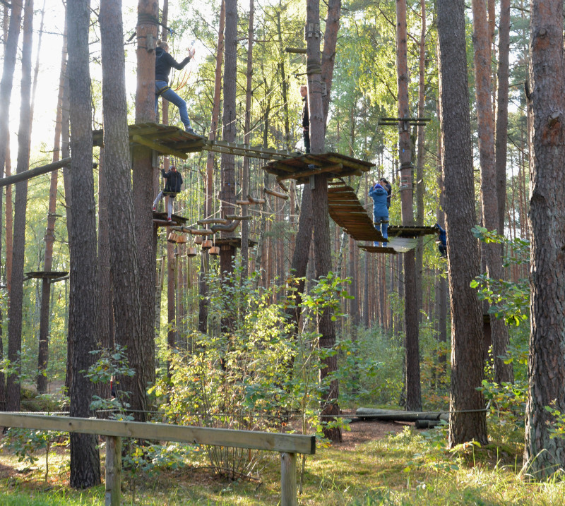 Schorfheide - high rope course - Garden