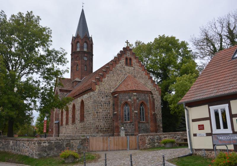 Altkünkendorf / Uckermark: Grumsin Buchenwald
