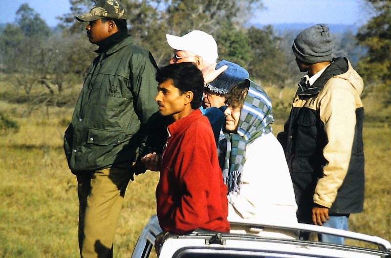 Kanha - Nationalpark Tiger-spotting