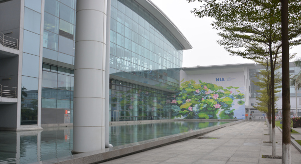 Noi Bai Internationaler Flughafen