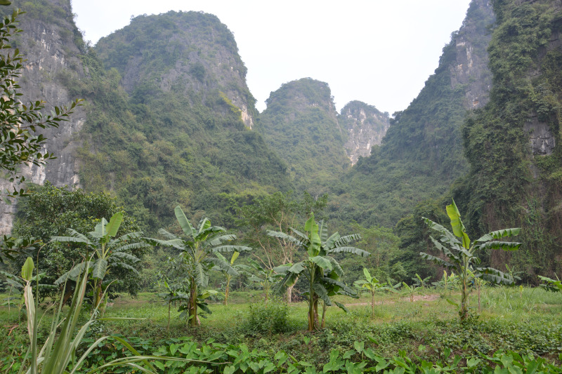 Short visit in North – vietnam