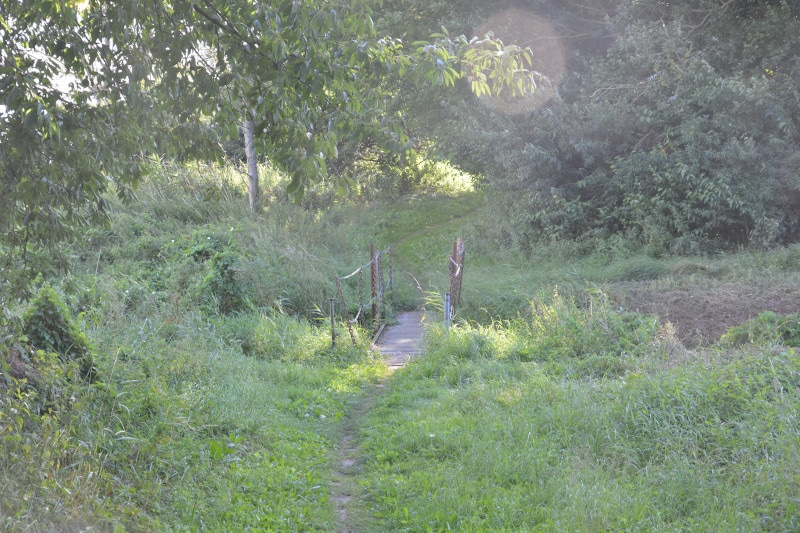 Urlaub Rügen : Ostseeradweg - Radweg am Strelasund