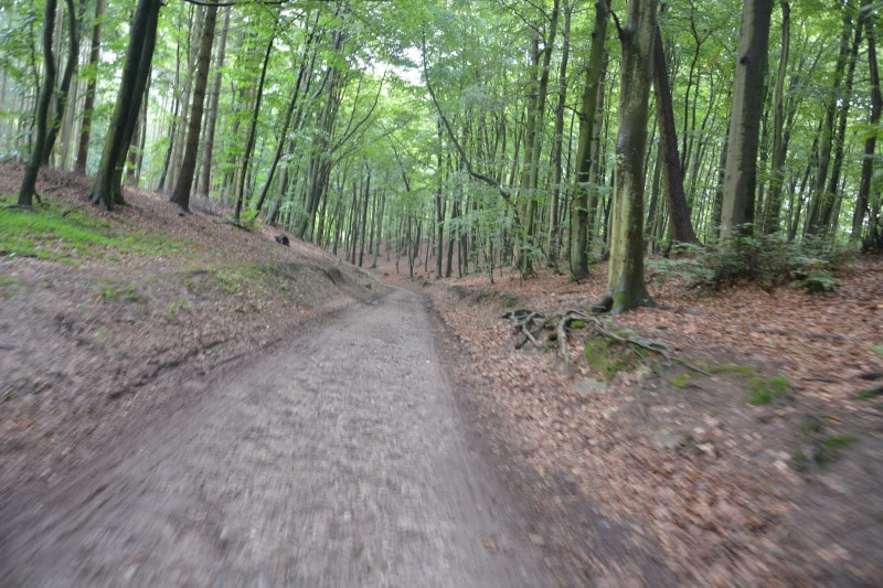 Rügen Fahrradweg Binz - Baabe