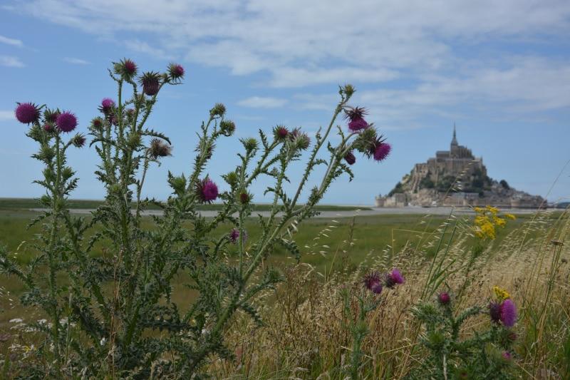 Radtour Frankreích Reims - Mont Saint Michel: