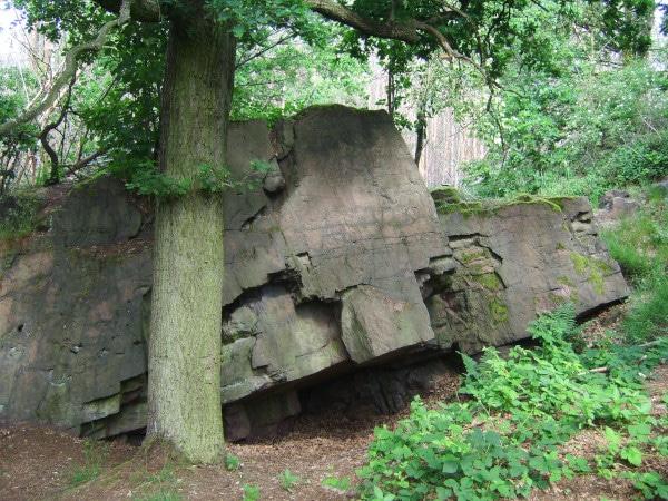Schildau: Napoleonstein am Schildberg