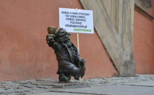 Wroclaw Herold - dwarf in front of the town hall