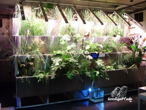 Vertikale Pflanzenkläranlage Modell nach Friedensreich Hundertwasser